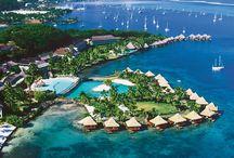 Paradise ❤