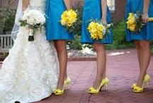 blou geel kleure
