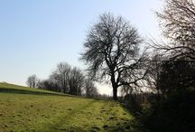 Breakheart Hill, Mitcheldean in Gloucestershire / A ramble on Breakhart Hill, Mitcheldean in Gloucestershire.