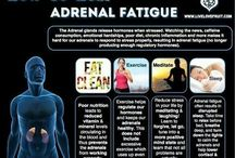 Health adrenals