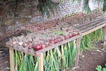 Zahradkárčenie - vychytávky