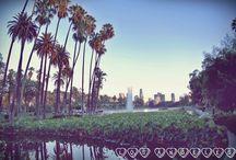 Los Angeles / I LOVE LA! Los Angeles, California