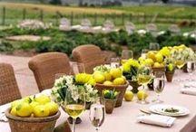 Festa Limão Siciliano