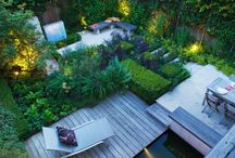 Garden ideas / by Toni Wolcott