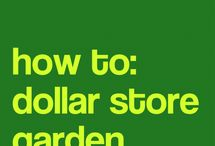 How to dollar store gardens