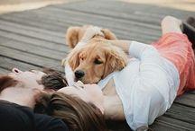 Любовь и собака