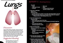 Respiratory System (Lungs) / Activity ideas for your Respiratory System Lesson - Preschool, Kindergarten, 1st grade, and home school science.