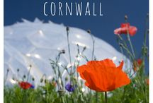 Cornwall - Travel inspiration / Staycation inspiration for Cornwall, ideas for days out and holidays.