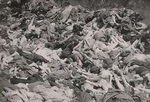Niemiecki Obozy