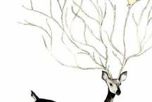 Darling Deers