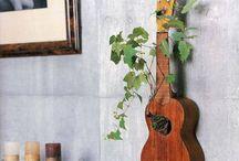 gitaarplant