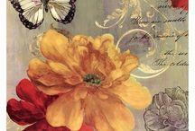 Laminas mariposas y pajaros