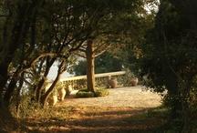 Villa Gemma / Corfu