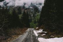 Winter Wonderland / by TJ