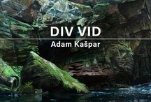Výstava DIV VID Adam Kašpar / Foto z výstavy a z vernisáže, komentovaná prohlídka