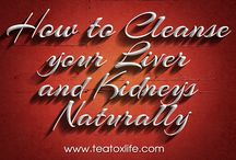 How To Cleanse Your Liver And Kidneys / Check this link right here http://best-teatox-diet.sitefly.co/ for more information on How To Cleanse Your Liver And Kidneys. A substantial benefit to using Cleansing The Liver And Kidneys tea in a detoxification program is that it just needs to be included in the diet. For instance, one just needs to consume the tea 2 to 3 times a day.  https://list.ly/TeatoxForWeightLoss
