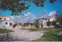 Βίλλα Θεοκλήτη / Συγκρότημα ενοικιαζομένων οικιών στην περιοχή της Κουρούτας στην Αμαλιάδα
