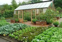 Farmhouse Greenhouses