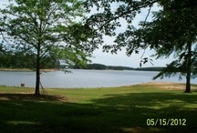 SOLD - RANCH OVERLOOKING LAKE HORTON / Beautiful Home on 3.02 acres with over 600 ft. lake frontage for great fishing and beautiful view of Lake Horton. Totally renovated in 2007/2008 with all new metal roof, windows, doors, flooring, sheetrock, insulation, wiring, plumbing, heat/air. For more information go to: http://408GrantRoad.gaforsalebyowner.com