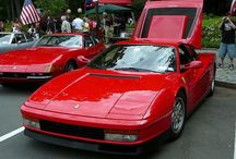 Ferrari / The love of the Horse.