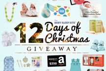 8th Annual 12 Days of Christmas Giveaway