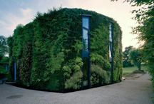 Green Living / by Green Purpose