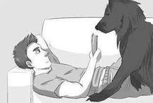 Cães ( DoGs ) ❤