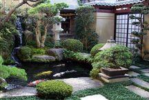 KOI POND / woda w ogrodzie japońskim