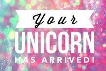 Unicorn / Unihorse