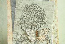 Hortensia stempel