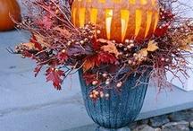 Fall stuff / by Nichola Chambers