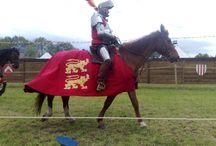 Joute equestre
