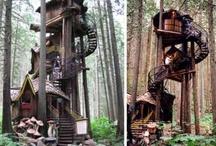 treehouse basic