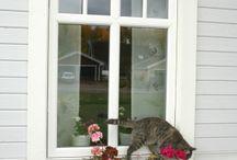Fasad och fönster