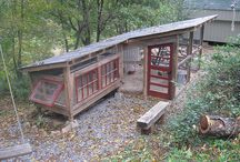 Chicken coop / Design ideas for a house for chickens
