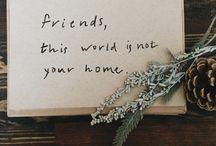 wonder filled words