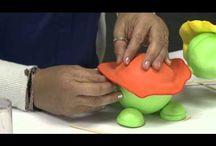 teknősbéka videó