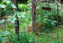 structural outside, garden gates ,kiesgarten, fences, deviders / es wird ernst im bambusgarten.... plane ein gartentor, einige zäune in der mitte werden entfernt, dafür  leichte raumtrenner , die die morgensonne reinlassen.. das neue gate soll die 4 meter breite öffnung mit einem faltbaren tor verschließen. metallrahmen mit holzlatten. sichtschutz und neue kiesfläche.. es muss nicht immer rasen sein! in kleinen gärten sowieso nicht.
