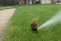 Irrigation routine maintenance  / Routine maintenance for a happy lawn sprinkler system
