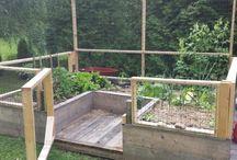 jardin amenagement