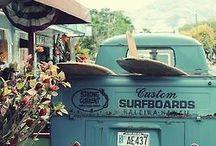 surf school vans