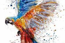 Pássaros e aves: fotos e pinturas
