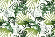 Design > Patterns <