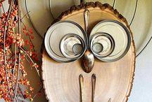 Owls, pöllöt