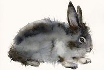 Bunnies! / by Adrienne Henderson