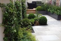 bahçe duvari