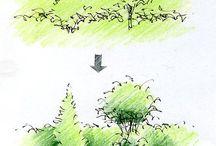 パースの描き方