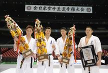 international kyokushin organisation (iko)