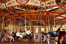 Charming Carousels