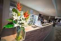 Hospitality flowers by Floral Instinct